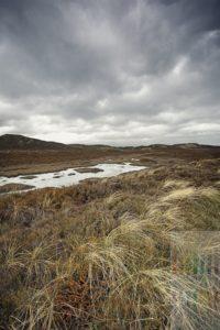 Menschenleere Dünen und Heidelandschaft unter grauem Wolkenhimmel im Norden der Insel Sylt