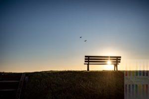 Sitzbank auf der Deichkrone am Wattenmeer in Keitum/Sylt. Zwei Wildgänse fliegen durch die Sonnenuntergangsszene zu ihrem Schlafplatz